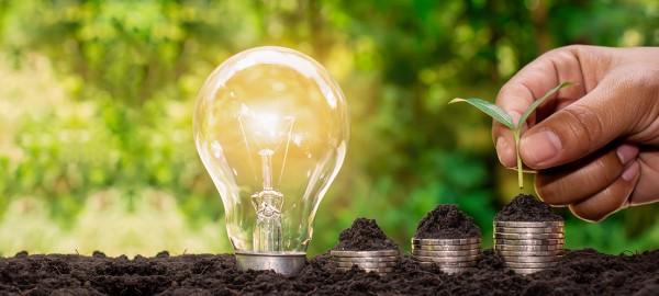 Как да се грижим за планетата и едновременно с това да намалим месечните си разходи?